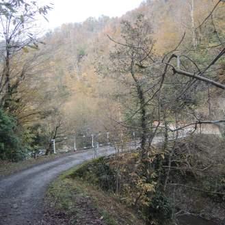 Mtirala Brücken (1)