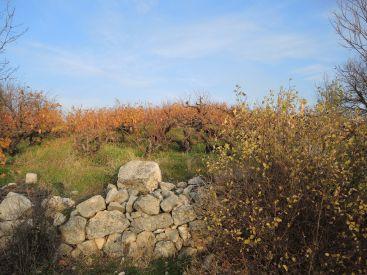Uzuncaburc (5)