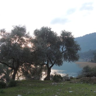 Sultaniye II (8)